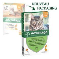 ADVANTAGE 40 - 6 pipettes antiparasitaires - Pour chat et lapin de moins de 4kg