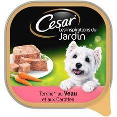 CESAR Barquette en terrine au veau et aux carottes - Pour chien adulte - 300 g