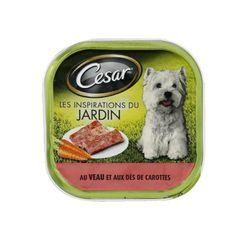 CESAR Barquette en terrine au veau et aux carottes - Pour chien adulte - 300 g (x20)