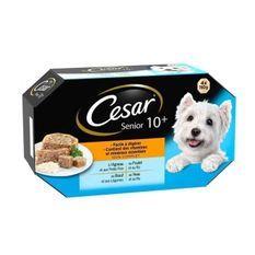 CESAR Barquettes en gelée - 4 variétés - Pour chien senior - 4 x 150 g (x6)