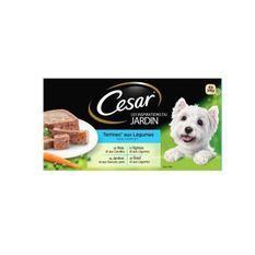CESAR Barquettes en terrine - 4 variétés - Pour chien adulte - 4 x 300 g (x4)