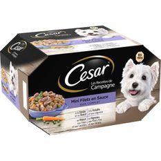 CESAR Barquettes Mini filets en sauce - 4 variétés - Pour chien adulte - 8 x 150 g