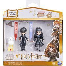 HARRY POTTER Pack amitié Magical