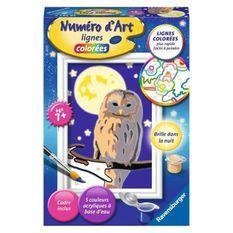 Numéro d'art - mini format - Chouette - Ravensburger - Kit complet de Peinture au numéro - Des 7 ans