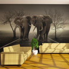 Papier peint City of elephants