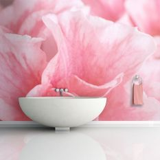 Papier peint Fleurs roses de l'azalée