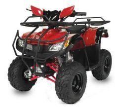 Quad 125cc automatique T Rex e-start 7