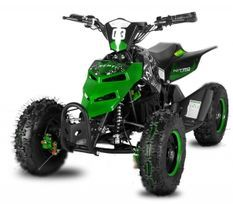 Repti de luxe 800W vert 6